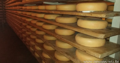 Museum de oude kaasmakerij + workshop kaas maken